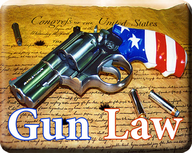 The State has the power to regulate Gun Laws